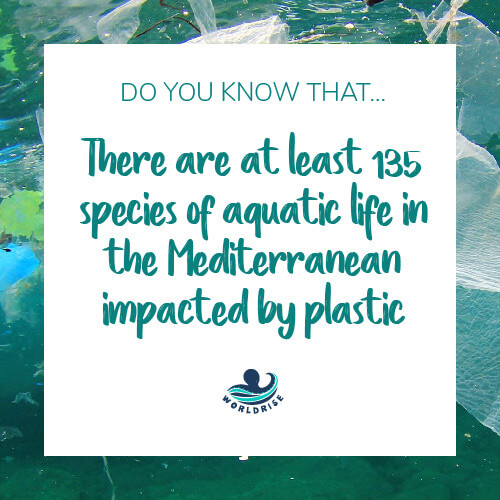 10 Things You Didn't Know About Plastic Worldrise 9