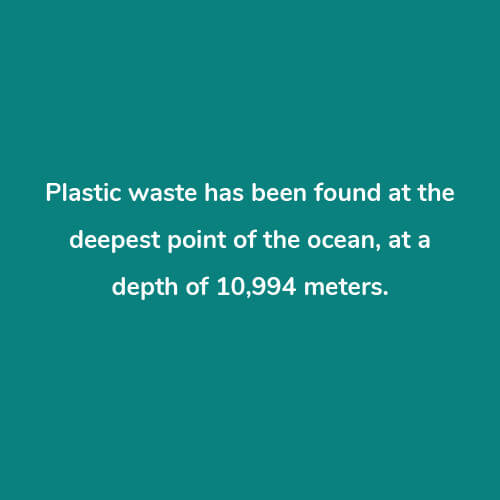 10 Things You Didn't Know About Plastic Answers Worldrise 2