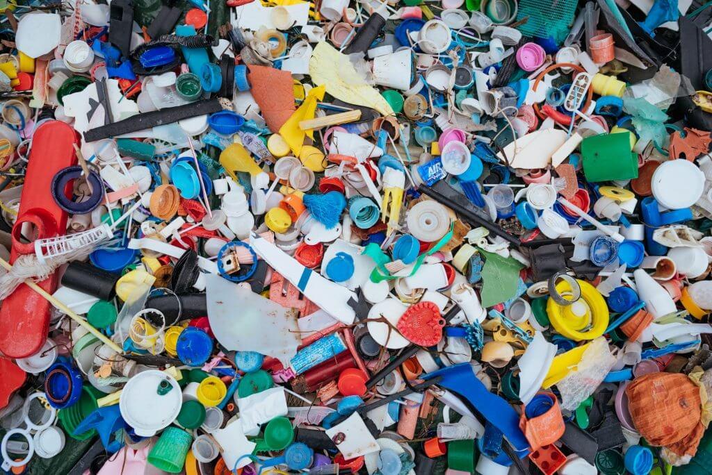 No Plastic More Fun Worldrise