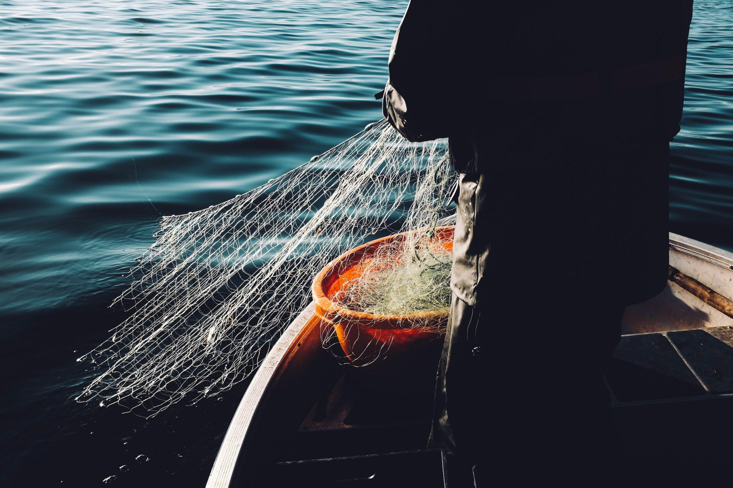 Pesca industriale e pesca artigianale: quale è la differenza?