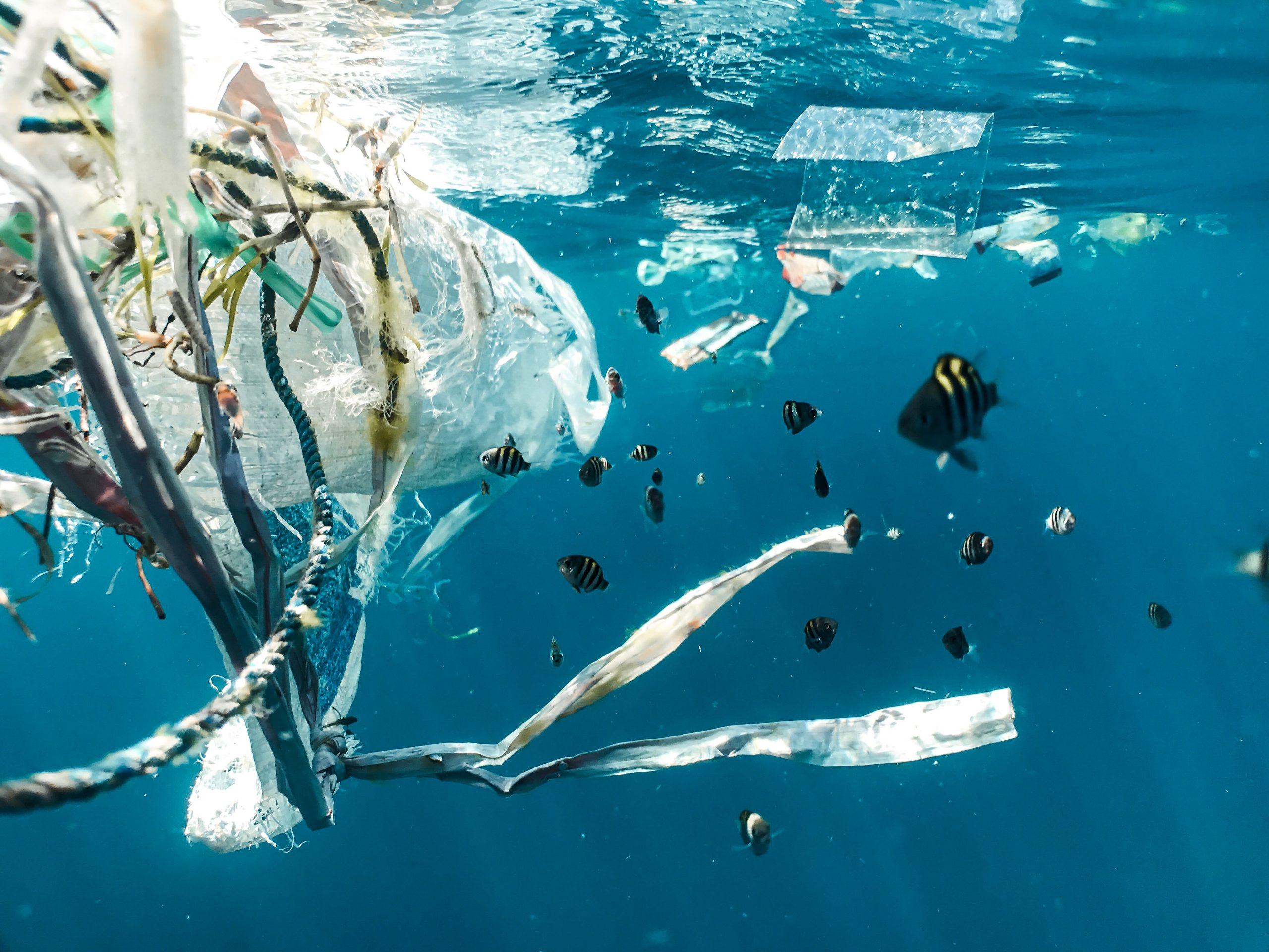 #Batti5: un mare di plastica, la soluzione siamo noi.